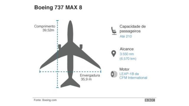 Infográfico mostra detalhes da estrutura do avião