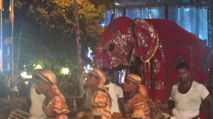 المعتقدات الهندوسية والبوذية تضع الفيلة في مكانة دينية عالية