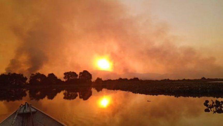 Fumaça preta sobe em meio a árvores do Pantanal