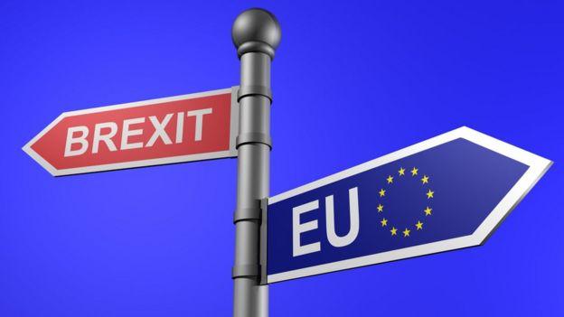 Image result for brexit images