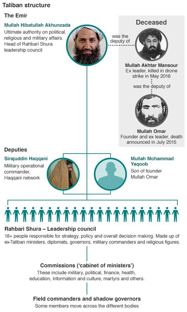 Talibanska struktura