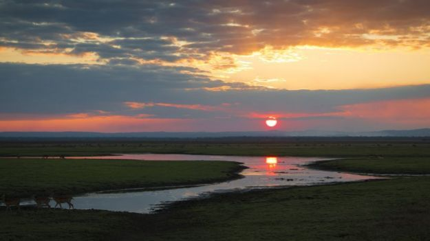 sunset in Gorongosa National Park