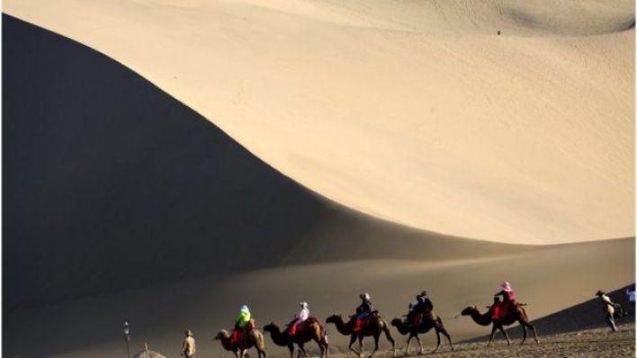 سياح على الجمال - طريق الحرير