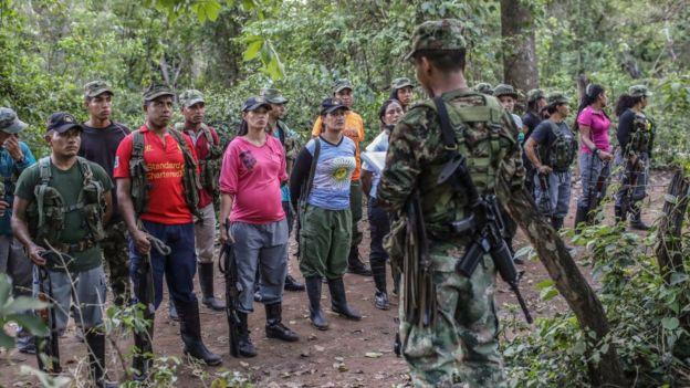 Guerrillas de las FARC en La Guajira