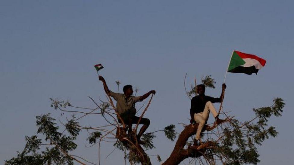 متظاهران فوق شجرة ويرفعان العلم السوداني