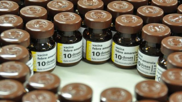 Dezenas de vidros com doses de vacina contra febre amarela