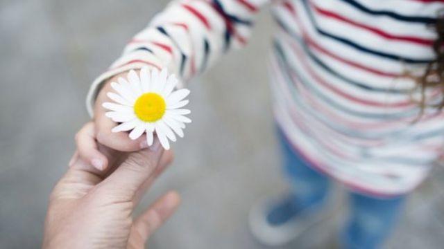 Criança oferece uma margarida a outra pessoa
