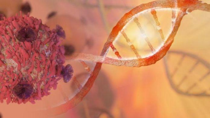 ADN actuando con una célula cancerígena.