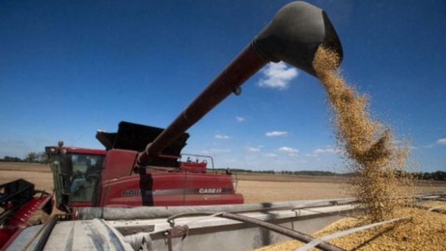 A fall in soybean exports hit fourth quarter growth