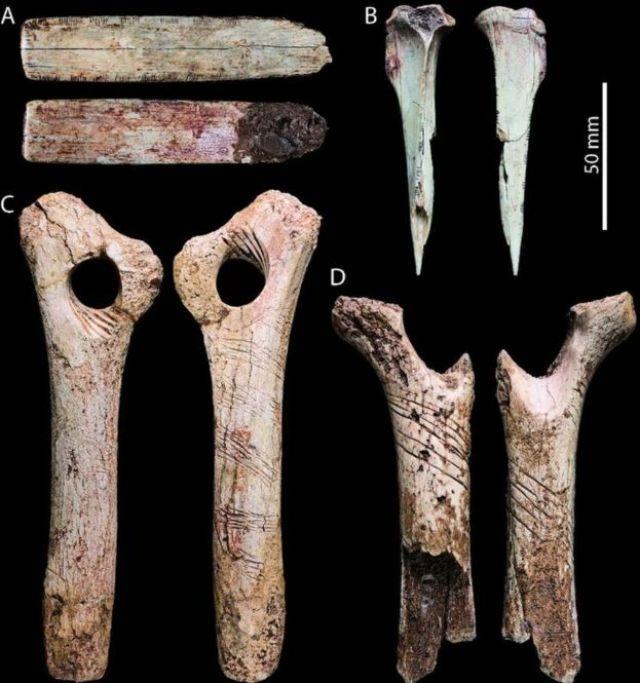 Huesos marcados encontrados en la cueva de Cheddar