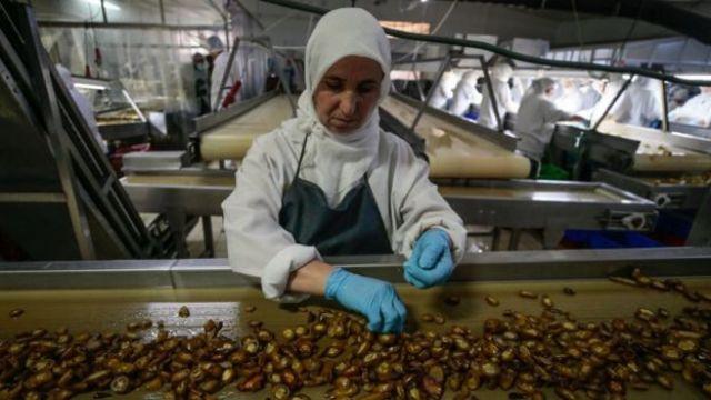 Fábrica de processamento de pimenta na Turquia