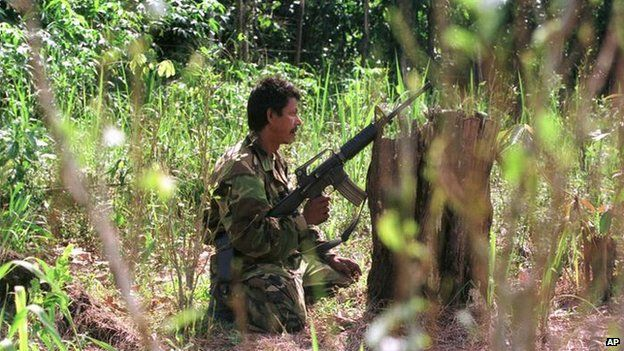 A Farc rebel in a coca field, 2000