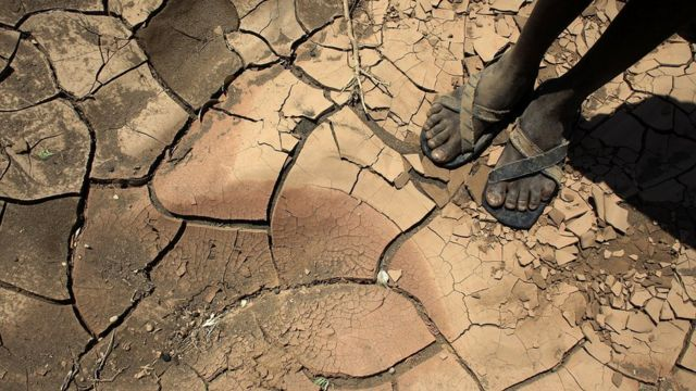 Someone standing in a dried up river in northern Kenya