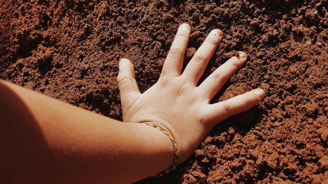 Mão de menino na terra