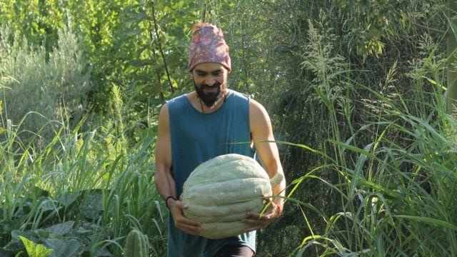 Bruno Nacif NFT satışlarını Arjantin'de ektiği meyve ormanından yapıyor