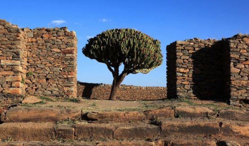 أطلال قصر ملكة سبأ في أكسيوم