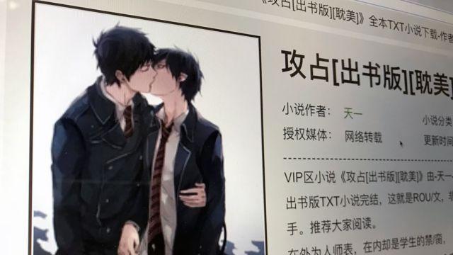 同性戀小說作者因私賣色情同志小說被重判十年 - BBC News 中文