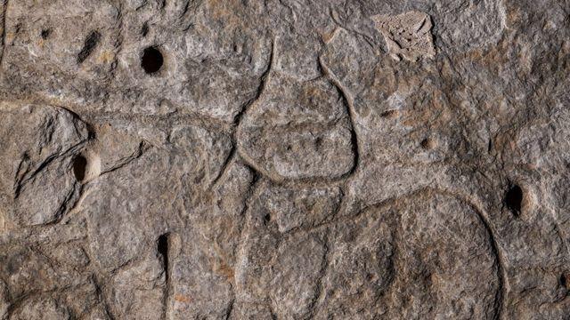 Markings on the rock