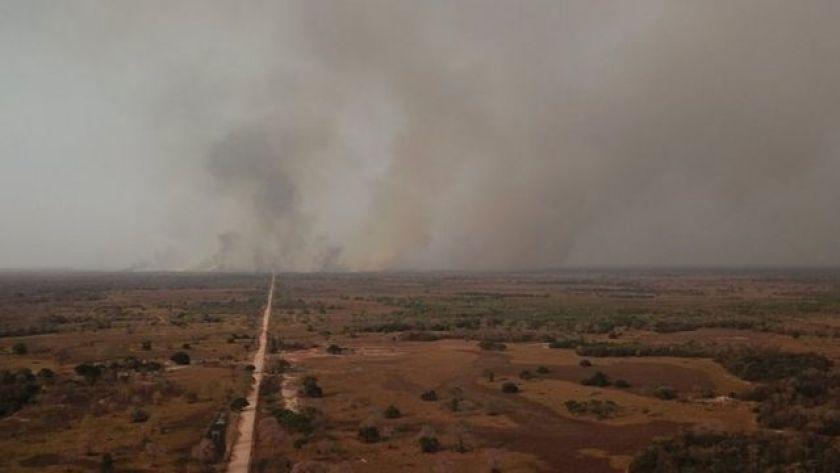 Fire in the Cerrado, in photo from 2020