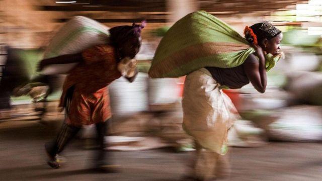 عاملات يحملن نبات الكاكاو