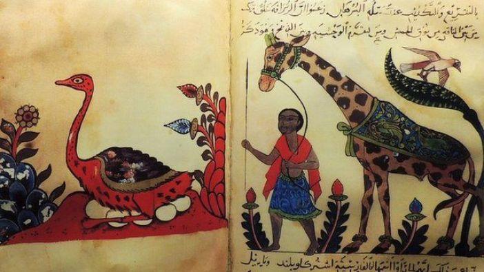 O livro dos animais - GETTY IMAGES