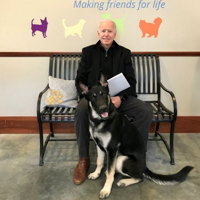 President Biden adopted his dog, Major, in 2018