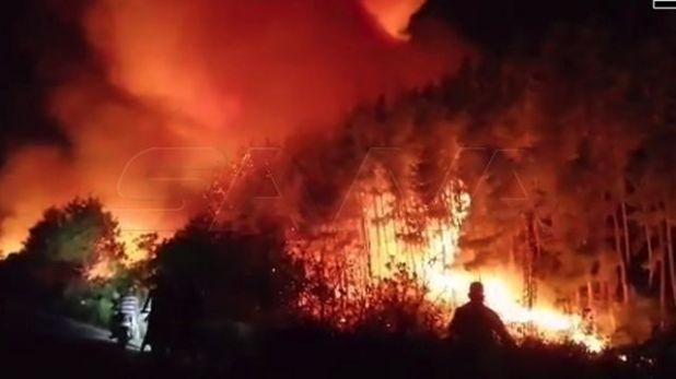 صور من الحرائق في ريف طرطوس الشرقي