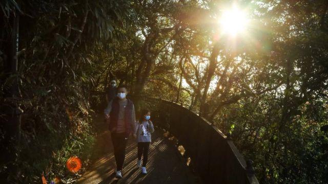أسرة تسير في غابة في هونغ كونغ، وأشعة الشمس تتسلل من بين الأشجار