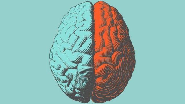 چپ و راست مغز