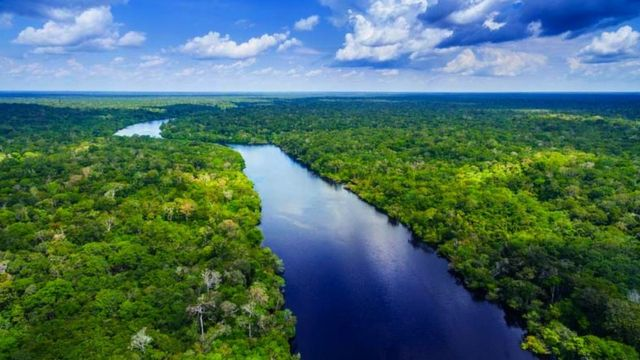 An aerial view of the Amazon River in Brazil