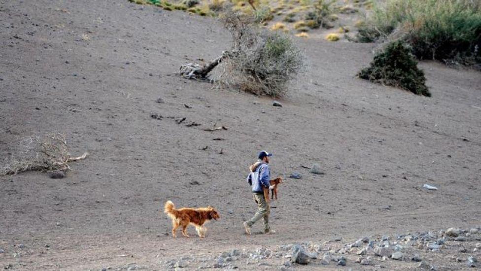 Un hombre camina por un terreno seco con su perro y una cría de cabra en Mendoza, Argentina