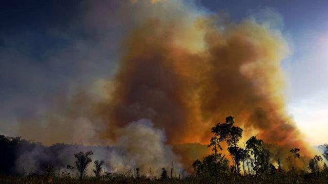 Amazon'da orman yangınları