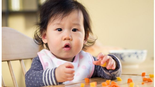 babies given solid food