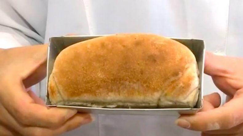 Pan hecho con cucaracha