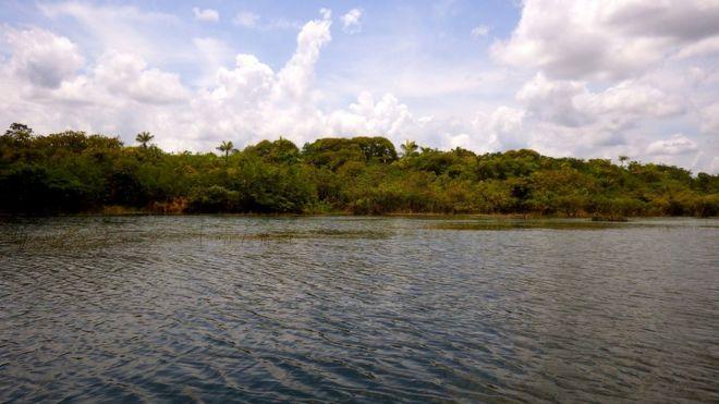 Pesquisadores da Universidade de Exeter fizeram estudo que descobriu presença do homem na Amazônia há 4,5 mil anos