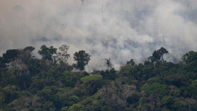 Vista aérea de humo en la Amazonía.