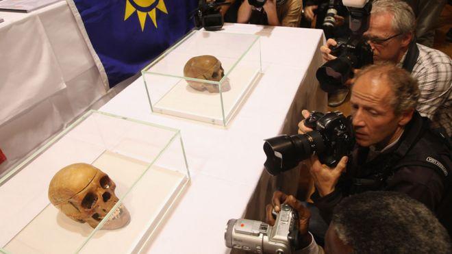 Fotógrafos em frente a crânios em caixas de vidro
