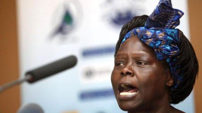 En 2004, Wangari Maathai. biologiste kényane, est la première femme africaine à obtenir le Prix Nobel de la Paix. Elle reçoit la célèbre distinction en vertu de « sa contribution en faveur du développement durable, de la démocratie et de la paix ».