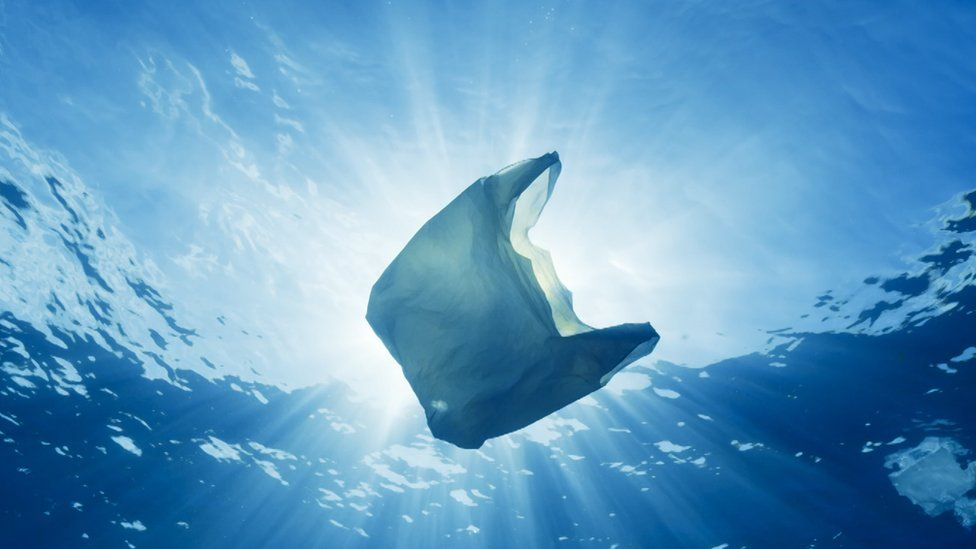 Image result for plastic in the ocean blue planet 2