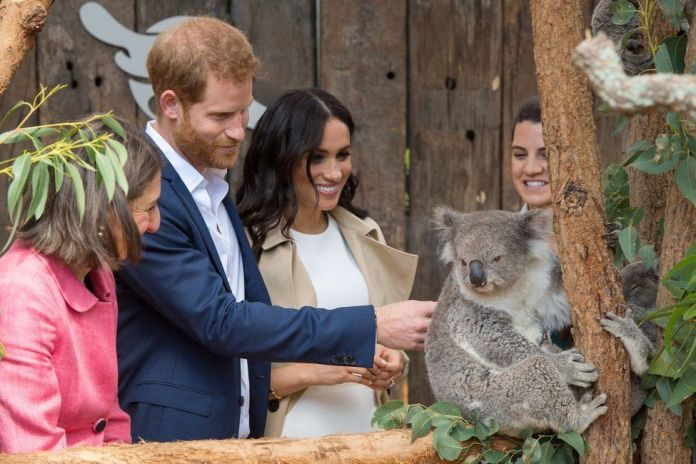"The Duke and Duchess of Sussex meet a Koala called Ruby during a visit to Taronga Zoo in Sydney on the first day of the Royal couple""s visit to Australia"