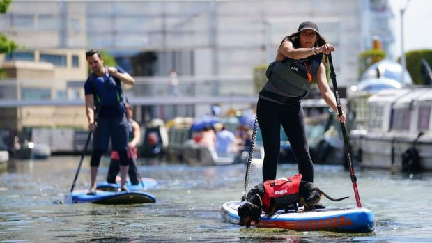 A woman paddle boards with a dog on the canal in Paddington Basin, north London on Bank Holiday Monday