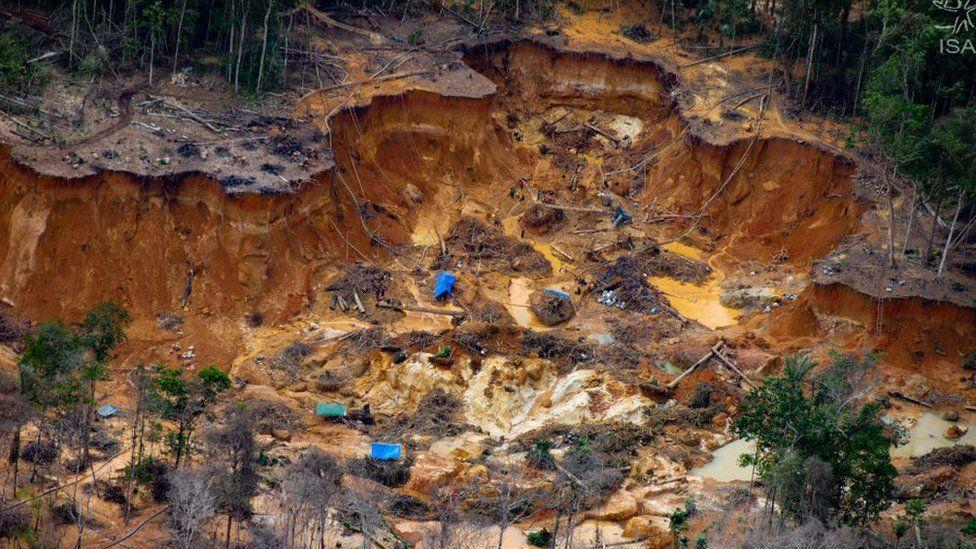 Illegal mining site near the Uraricoera river