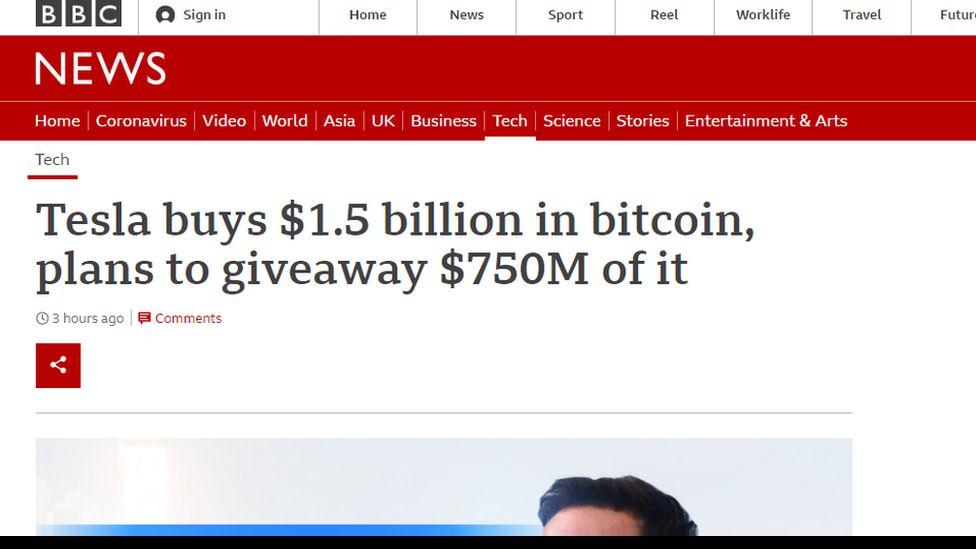 Screenshot of fake website
