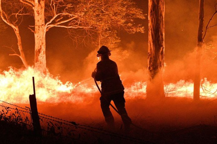 Image result for australian bushfires