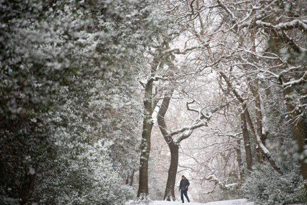 Snow falls as people walk in Sutton Park in Birmingham, on 9 February 2021