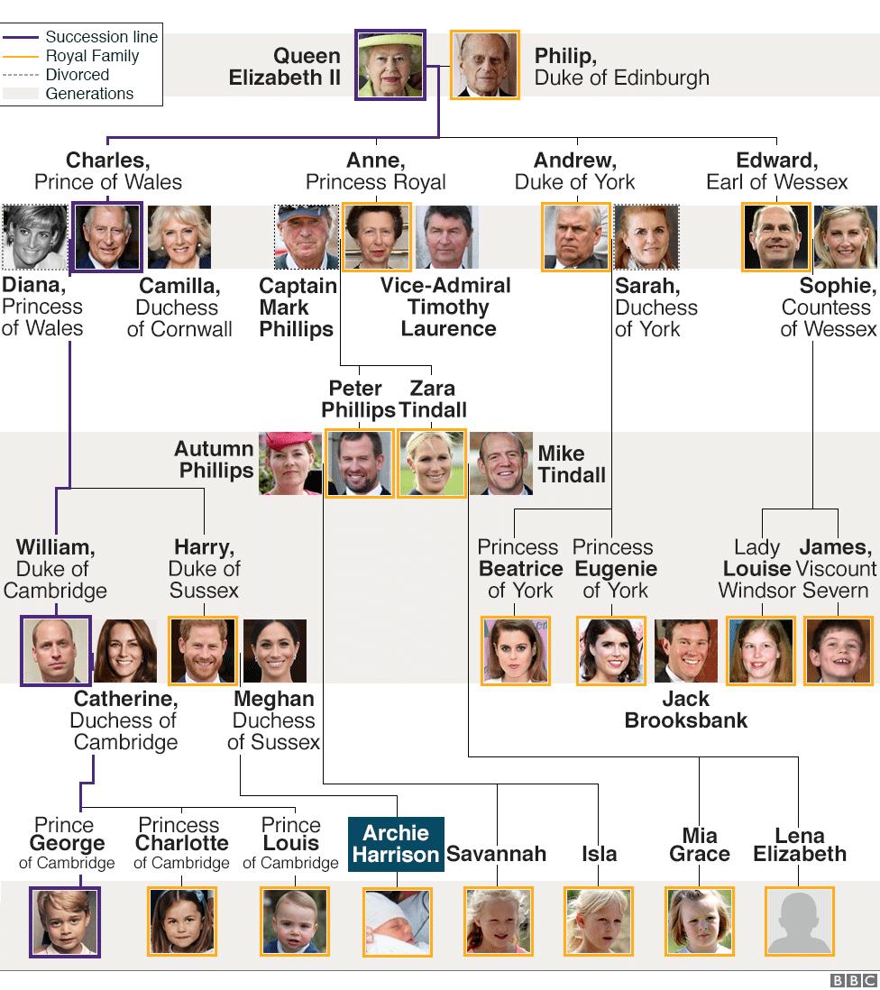 medium resolution of royal family tree presentational
