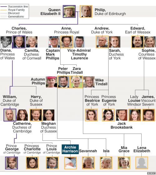small resolution of royal family tree presentational