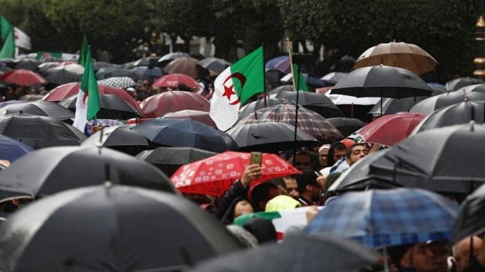 Umbrellas seen during an anti-government protest in Algiers, Algeria - Friday 15 November 2019