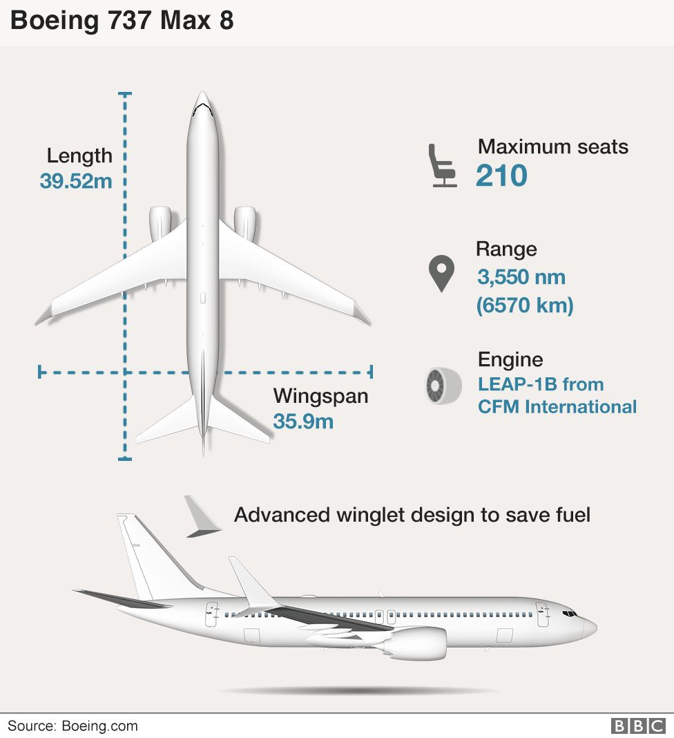 hight resolution of infographic of the boeing 737 max 8