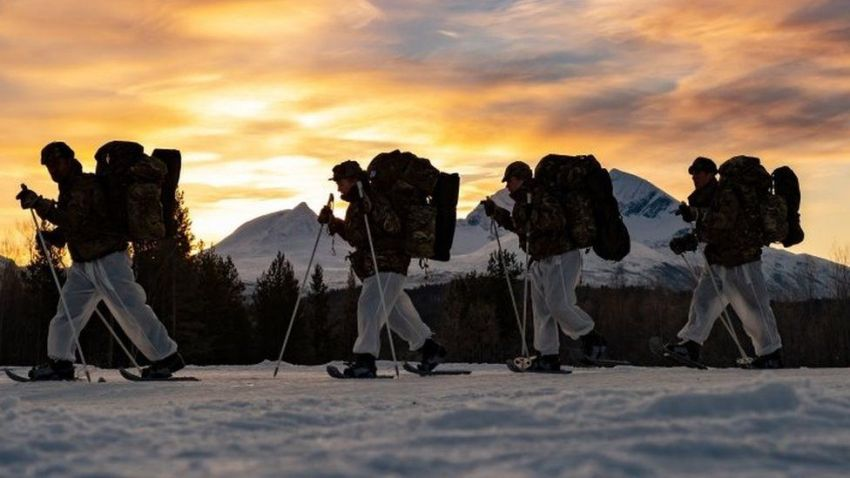 Royal Marines on cold weather training